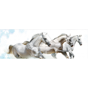 Painel Panorâmico Parede Cavalos
