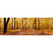 Painel Panorâmico Parede Floresta Outono