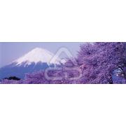 Painel Panorâmico Parede Monte Fuji Japão