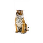 Decoração Vinil Forrar Portas Tigre
